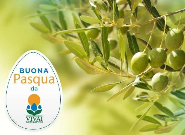 Visual-news-sito-Pasqua-V3