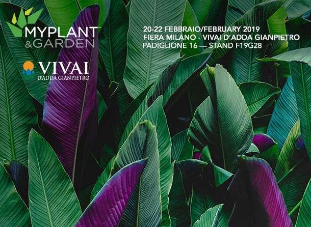 myplant-and-garden-2019-v2